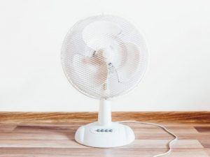 fans and misters for the summer