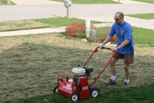 Frugal Workout: Dethatching your lawn manually