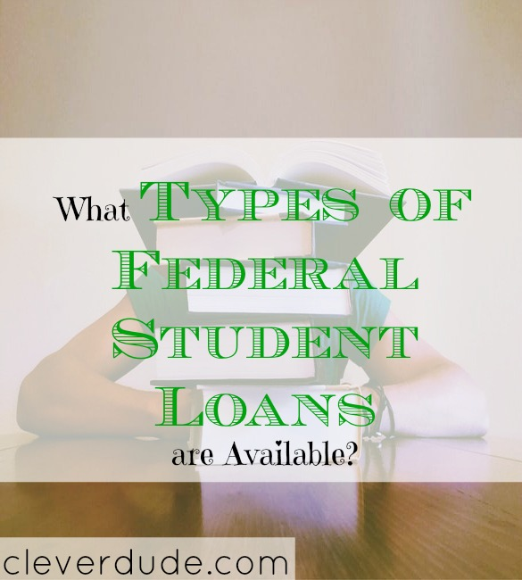 types of federal student loan programs, student loan programs, different types of federal student loan programs