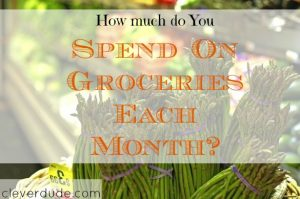 grocery shopping, food budget, groceries