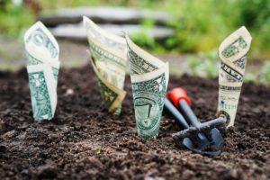 money-1604921_640