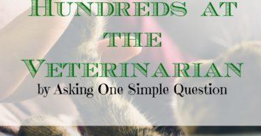 saving money at the vet, veterinarian expenses, budgeting at the vet