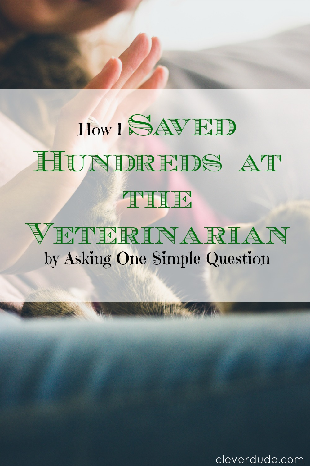 saving money at the vet, veterinarian expenses, budgeting at the vet
